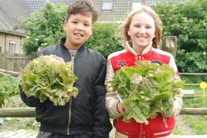 Wonen Noordwest Friesland groentetuin Oudebildtzijl   MKW Platform