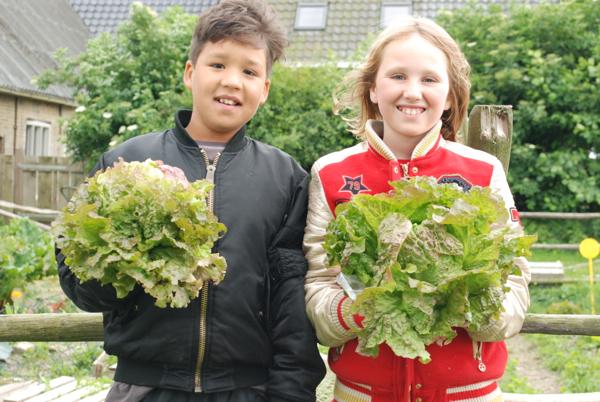 Wonen Noordwest Friesland groentetuin Oudebildtzijl | MKW Platform